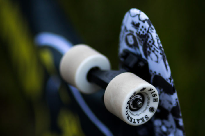 Wakeademics x Fish Skateboards
